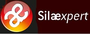 """<span class=""""text-small"""">Venez découvrir votre <strong>nouvel outil de paie Silaexpert </strong></span> <br>avec les Webdemo Externa!"""